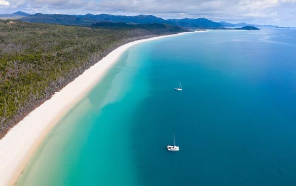 Lokasi pantai juga tepat di jantung Great Barrier Reef yang terkenal dengan keindahan laut dan isinya.