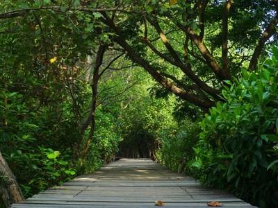 7 Hidden Gems Pulau Jawa, Cocok Dikunjungi Saat Staycation atau Virtual