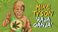 Mike Tyson Raja Ganja