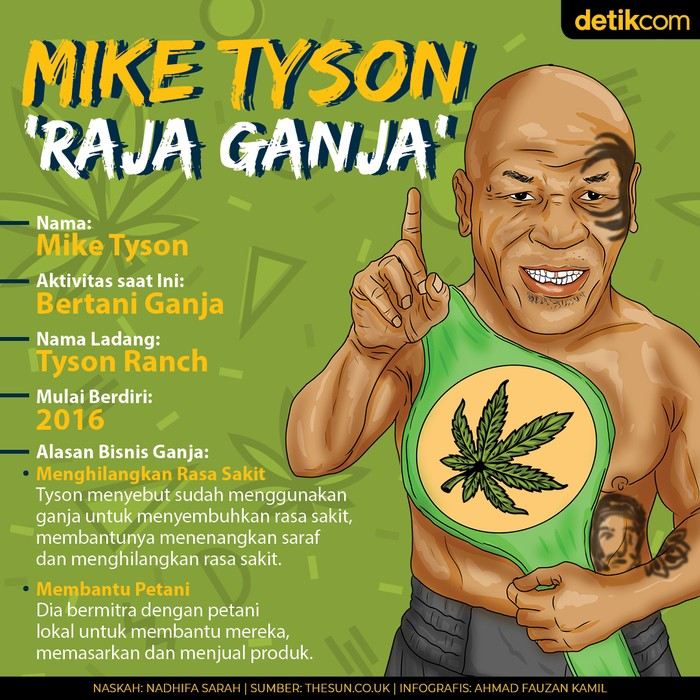 Mike Tyson Bertani Ganja