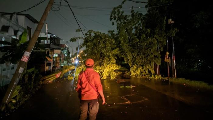 Pohon tumbang di Bekasi akibat hujan lebat disertai angin kencang semalam (dok. BPBD Kota Bekasi)