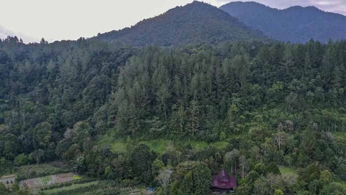 Sejumlah produk jadi buah andaliman yang telah dikeringkan di Desa Ps Lumban Julu, Kabupaten Toba Samosir, Sumatera Utara.