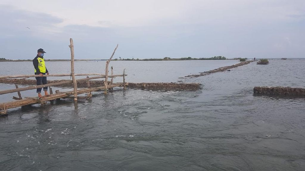 Tanggul Jebol, 125 Ha Tambak di Polman Terancam Tenggelam