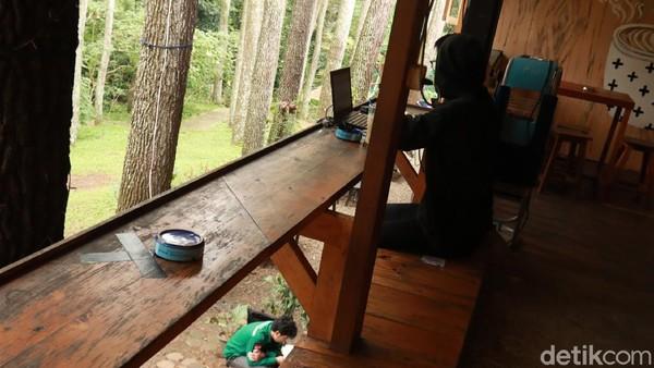 Jika kalian suka suasana alam, kalian bisa duduk di kursi yang ada di bawah pohon pinus. Tapi kalian juga bisa duduk di meja dan kursi yang disediakan di lantai atas bangunan. (Wisma Putra/detikTravel)