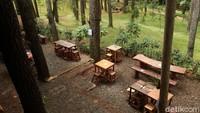 Foto Tempat Ngopi Adem di Bandung, Mejanya di Bawah Pohon Pinus