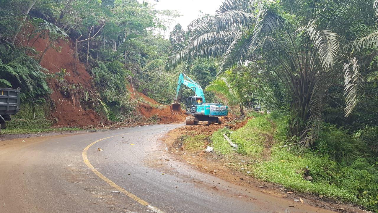 Pekerjaan Dinas PUPR Sulbar usai gempa Sulbar. (Abdy Febriady/detikcom)