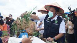Dongkrak Sektor Pertanian, Gubernur Sumsel Resmikan SSTP