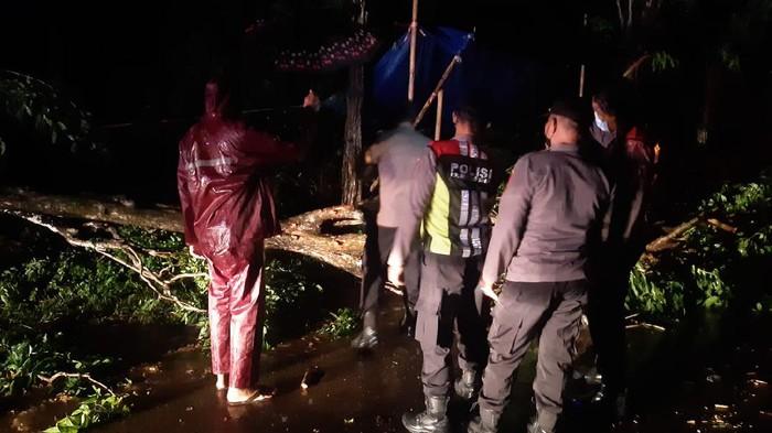 Hujan deras disertai angin kencang menyebabkan puluhan rumah tiga kecamatan di Kabupaten Sumenep rusak. Sejumlah pohon dan tiang listrik juga roboh dan aliran listrik padam.