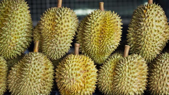 china impor durian dari thailand