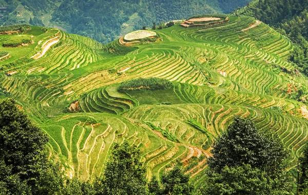 Kalau pandemi berakhir, coba datang ke desa ini, ya.(Getty Images/iStockphoto)