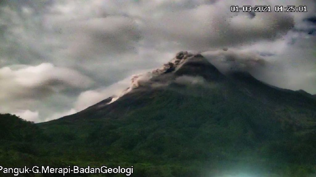 Merapi Luncurkan 52 Kali Guguran Lava Pijar, 1 Kali Awan Panas