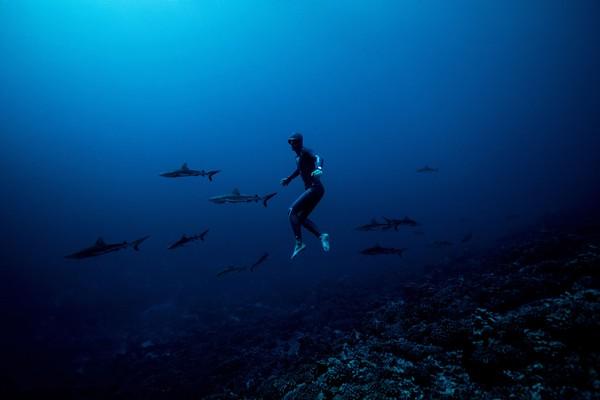 Nery adalah mantan juara dunia dalam olahraga freediving yang tak menggunakan alat selam dan hanya mengandalkan menahan napas.