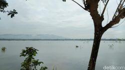 Ratusan Hektare Sawah Pangandaran Kebanjiran, Petani: Nggak Ada Solusi