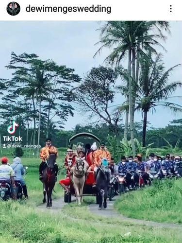 Viral Pengantin Naik Kereta Kuda Melintasi Persawahan di Magelang