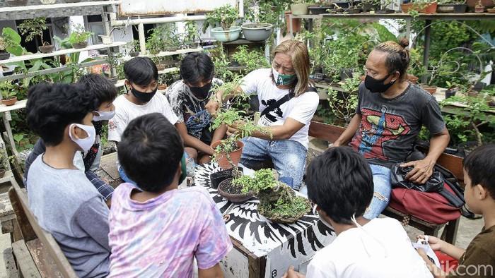 Komunitas Young Bonsai Kampung Bali, Tanah Abang, Jakarta, terus berupaya agar tetap kreatif. Di masa pandemi ini, mereka terjun untuk memberdayakan warga.
