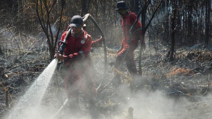 Kebakaran di Cagar Biosfer Giam Siak Kecil