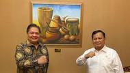 Gerindra Ungkap Prabowo-Airlangga Beberapa Kali Bertemu, Bahas Apa?