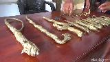 Pakar Sebut 31 Benda Pusaka yang Ditemukan di Lumajang Adalah Jimat