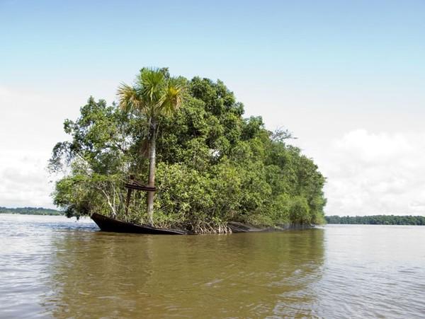 Pecahan kapal yang diambil alih alam dan berubah jadi pulau kecil.