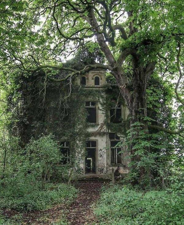 Bangunan vila yang seperti rumah hantu.