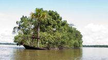 Foto: Bukti Alam Lebih Kuat dari Peradaban