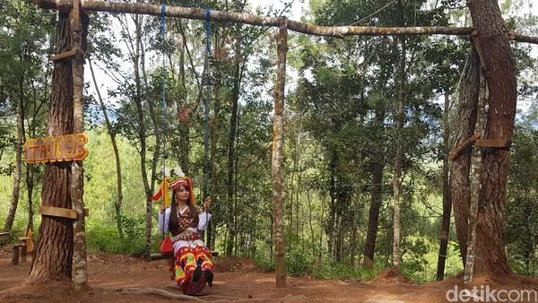 Bahkan dari puncak kawasan hutan pinus Lenong ini, traveler juga bisa memandang keindahan alam kawasan perdesaan Kabupaten Mamasa. Hamparan sawah terasering yang berada di Kaki Gunung Mambulilling jadi pemandangannya.