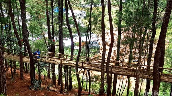 Tidak hanya itu, di tengah kawasan wisata hutan pinus Lenong, traveler akan mendapati sejumlah spot foto menarik dan instagramable.