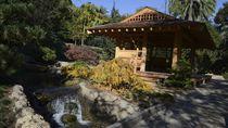 Indahnya Taman Ala Jepang di Sudut California