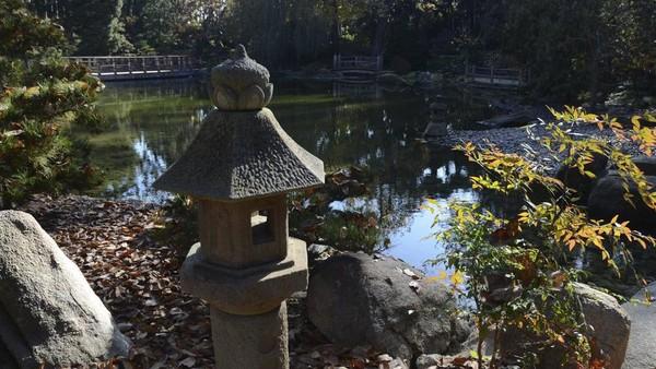 Dek pengamatan dan jembatan penyeberangan melintasi kolam koi dengan teratai.