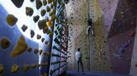 Karena seluruh otot tubuh bergerak saat melakukan panjat dinding, olahraga ini memiliki manfaat untuk meningkatkan ketahanan. Selain itu, stamina prima yang diperlukan saat memanjat dinding juga dipercaya bisa mengoptimalkan daya kerja jantung.