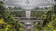 Warga Singapura Tabur Benih di Atap dan Balkon