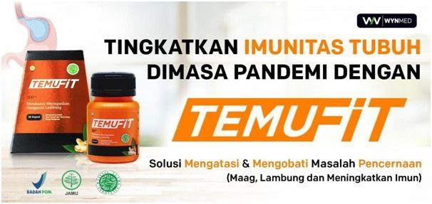 TEMUFIT