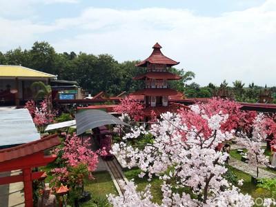 Waduk Cengklik Park, Wisata Baru di Boyolali