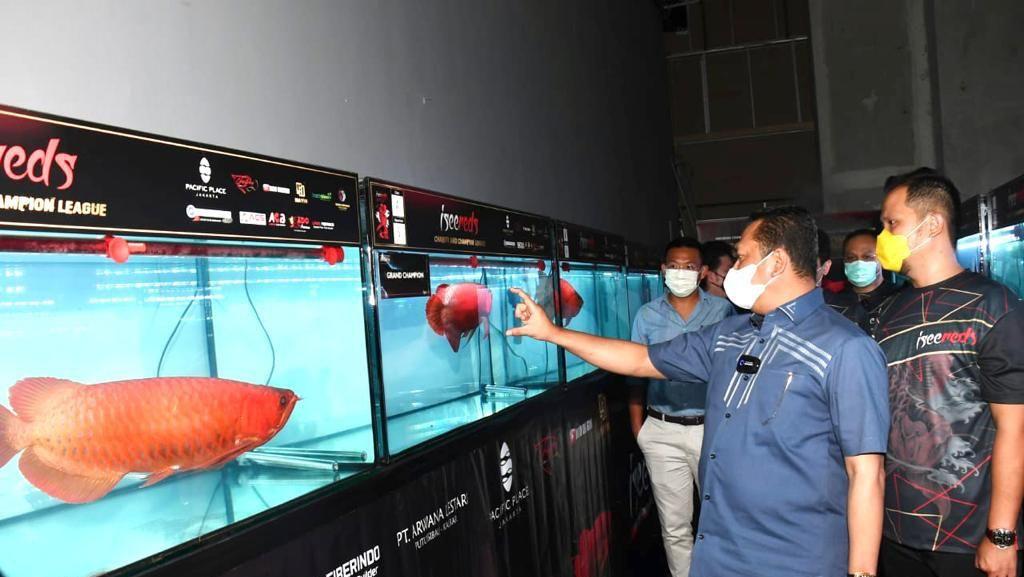 Di Pameran Arwana, Ketua MPR Dorong Ekspor Ikan Hias