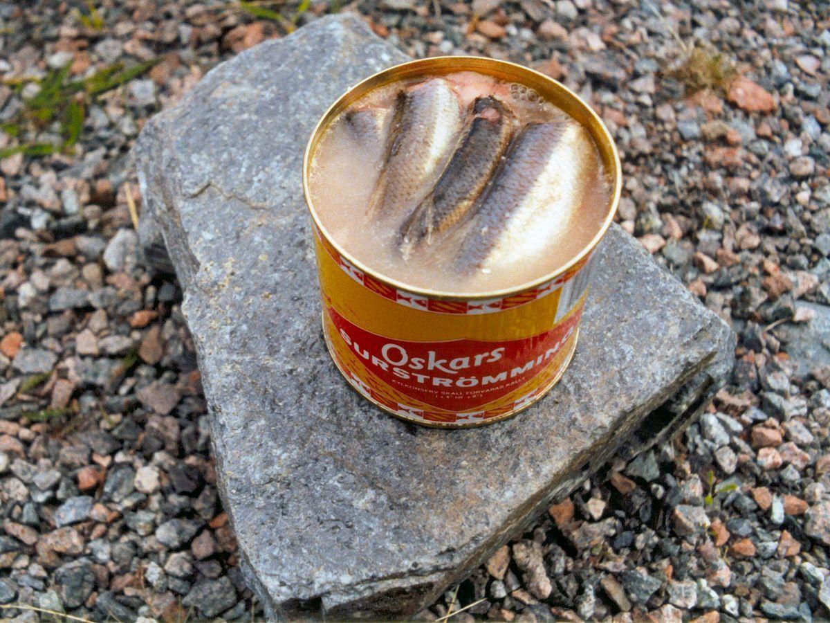 Duh! Tren Cium Aroma Ikan Amis Jadi Viral di Internet