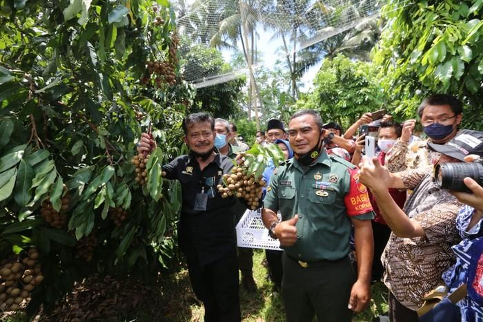 Mentan Syahrul Yasin Limpo ke agrowisata kelengkeng di Magelang.