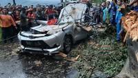 Pohon Randu Tumbang Timpa Mobil di Pemalang, 4 Orang Tewas