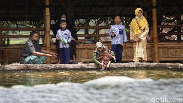Tunggu apa lagi? Anda bisa memasukkan The Roudh 78 ke dalam itinerary liburan keluarga saat berkunjung ke Malang.