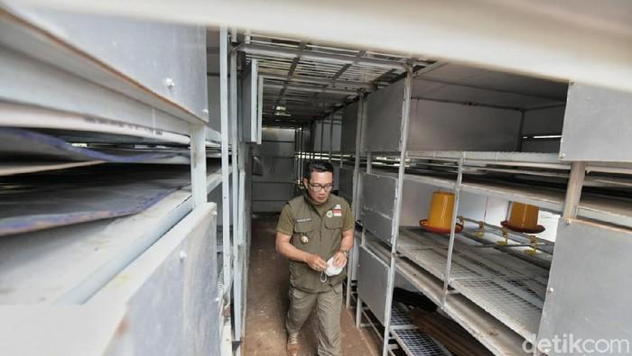 Ridwan Kamil memperkenalkan apartemen ayam di Badung