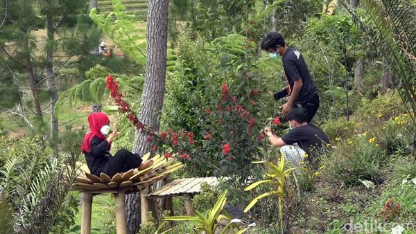 Kawasan ini juga memiliki aneka jenis tanaman anggrek yang khas. Keberadaan tanaman tersebut, menjadi daya tarik sendiri, yang memanjakan mata pengunjung khususnya kaum wanita. (Abdy Febriady/detikcom)