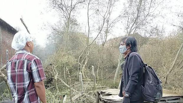 Petugas mengecek fenomena ribuan ulat yang menyerbu permukiman di Demak, Jawa Tengah, Selasa (9/3/2021).
