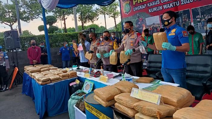 Polres Jakbar bongkar ladang ganja di Sumut, 114,5 ton ganja disita.
