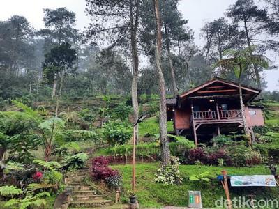 Ini Desa Batulayang, Desa Wisata Berkelanjutan Pertama di Bogor