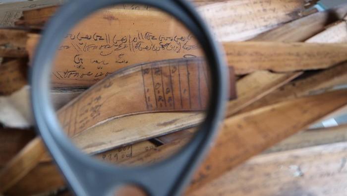 Digitalisasi yang dilakukan oleh DREAMSEA bertujuan untuk mendigitalisasi naskah kuno di Asia Tenggara, khususnya terhadap manuskrip-manuskrip yang disimpan oleh masyarakat Indonesia.