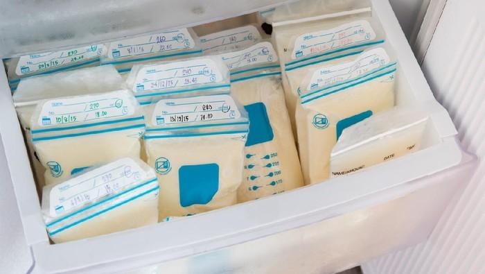 breast milk in plastic bags on refrigerator shelf, frozen mother milk  for infant, breastfeeding
