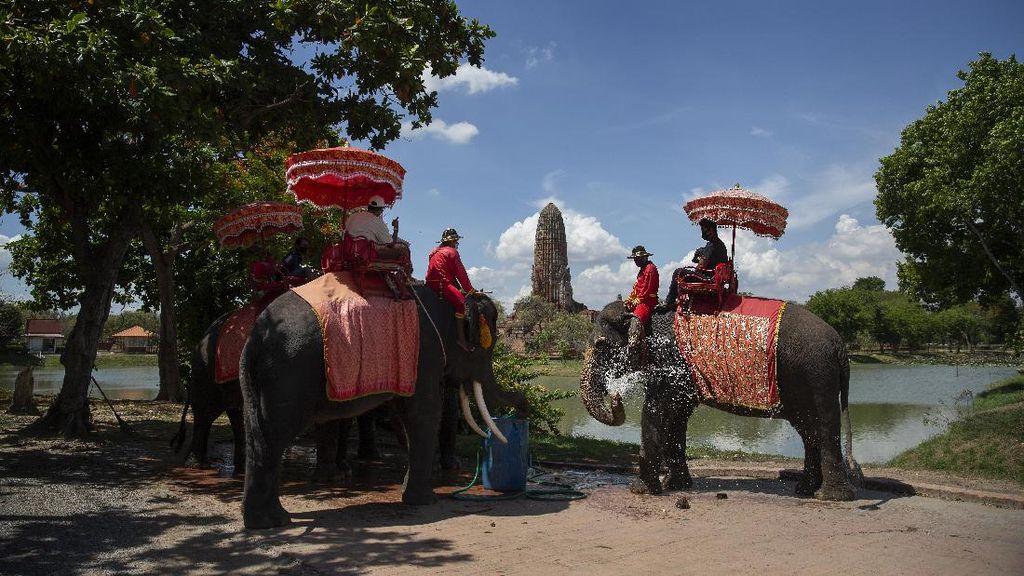 Apa Bahasa Resmi Negara Thailand? Simak di Sini Penjelasannya