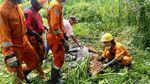 Kerja Keras Petugas Damkar Surabaya Evakuasi Sapi Masuk Rawa