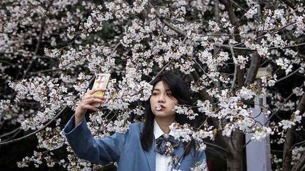 Seorang warga tengah berfoto di antara bunga sakura yang bermekaran di Universitas Wuhan, China, Kamis (11/3/2021) waktu setempat.