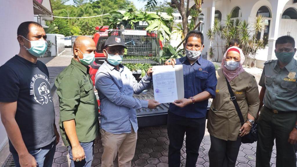Sempat Dipelihara, 9 Satwa Lindung di Rumdin Gubernur Aceh Diserahkan ke BKSDA