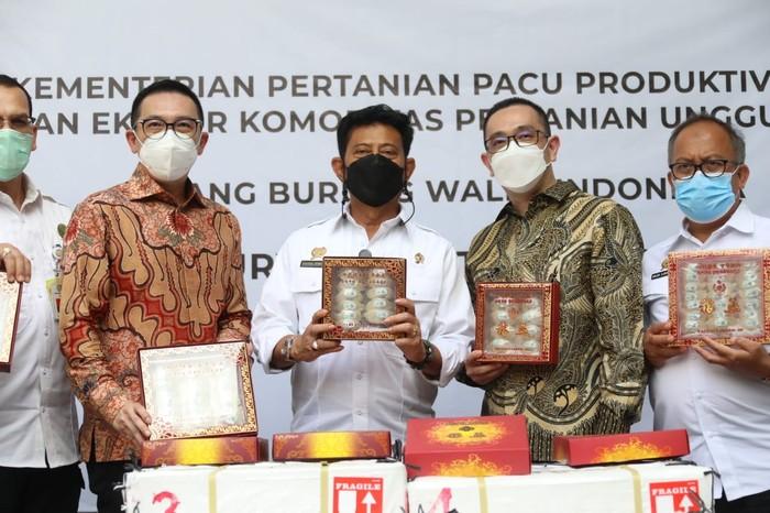 Menteri Pertanian Sayhrul Yasin Limpo